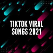 TikTok 2021 - Viral Songs von Various Artists