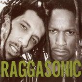 Raggasonic by Raggasonic