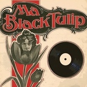 Ma Black Tulip by Rick Nelson