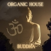 Organic House - Buddha by Various Artists