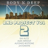 BND Project Vol 2 by Various Artists