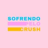 Sofrendo pelo Crush de Various Artists