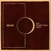 Say Something Now by Skaar