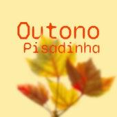 Outono Pisadinha de Various Artists