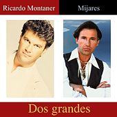 Dos Grandes de Various Artists