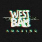 Amazing de Westbam