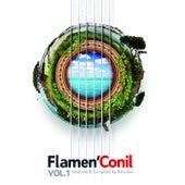 Flamen'Conil de Various Artists
