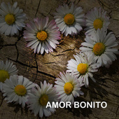 Amor Bonito by Various Artists