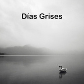 Días Grises by Various Artists