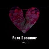Puro Desamor Vol. 1 de Various Artists