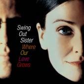 Love Won't Let You Down de Swing Out Sister