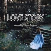 Love Story de Diane Santos