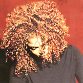 The Velvet Rope von Janet Jackson