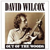 Out Of The Woods by David Wilcox