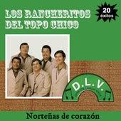 Norteñas De Corazón 20 Exitos de Los Rancheritos Del Topo Chico