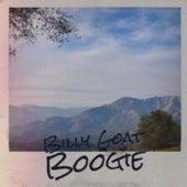 Billy Goat Boogie de Various Artists