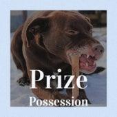 Prize Possession de Various Artists