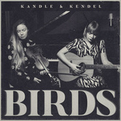 Birds by Kandle