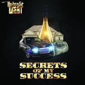 Secrets Of My Success de Hydrolic West
