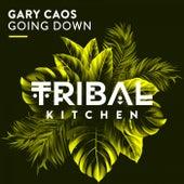 Going Down de Gary Caos