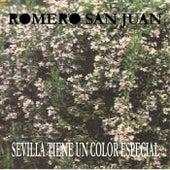 Sevilla Tiene Un Color Especial de Romero Sanjuan