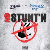 No Stunt'n by Zhane