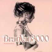Astounded by Bran Van 3000