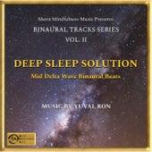 Deep Sleep Solution: Mid Delta Wave Binaural Beats de Yuval Ron