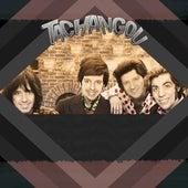 Si Nos Organizamos by Tachangou