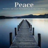 Peace: Peaceful and Calm Instrumentals to Help You Relax de Various Artists