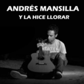 Y la hice llorar by Andrés Mansilla