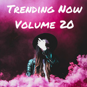 Trending Now Volume 20 fra Various Artists