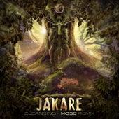 Cleansing (Mose Remix) von Jakare