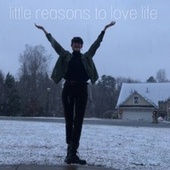 little reasons to love life de Andy