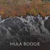 Hula Boogie by Various Artists