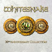 30th Anniversary Collection de Various Artists