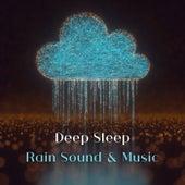 Immerse Yourself in Deep Sleep (Rain Sound & Gentle Instrumental Music for Restorative Sleep, Remedy for Insomnia, Sleepwalking) by Trouble Sleeping Music Universe