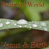 Beautiful World von Venus