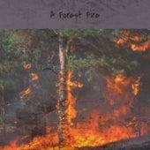 A Forest Fire von Various Artists