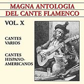 Magna Antología Del Cante Flamenco vol. X de Various Artists