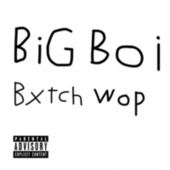 Bitch Wop by Big Boi