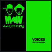 Voices In My Mind by Voices