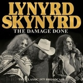 The Damage Done by Lynyrd Skynyrd