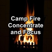 Camp Fire Concentrate and Focus de Christmas Hits