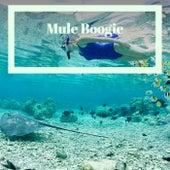 Mule Boogie by Various Artists
