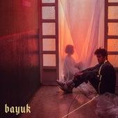 You Won by Bayuk