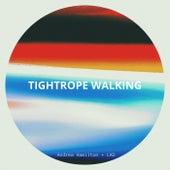 Tightrope Walking de Andrea Hamilton