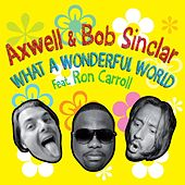 What A Wonderful World by Axwell