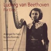 Fur Elise von Julia Rovinsky