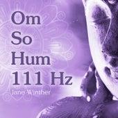 Om So Hum 111 Hz de Jane Winther